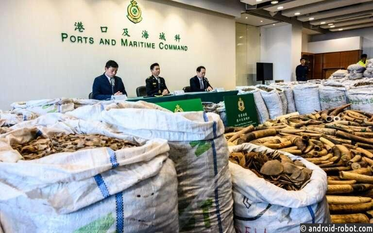 Гонконг активно борется с контробандой животных