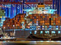 Рост мирового судоходства может привести к росту инвазивных видов