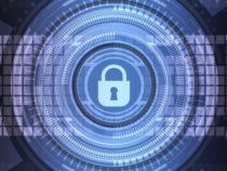 В СПбГУ создадут Международный центр по цифровым технологиям