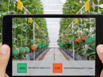 Правительство Канады вкладывает значительные средства в сельскохозяйственные технологии