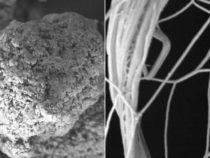 Новые полимерные пленки проводят тепло, а не задерживают его