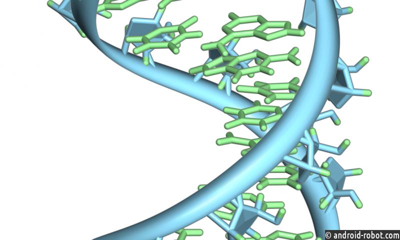 ДНК и РНК могли появиться вместе до того, как на Земле началась жизнь