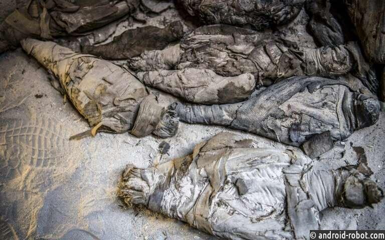 Мумифицированные мыши и многое другое в последнем открытии египетской гробницы