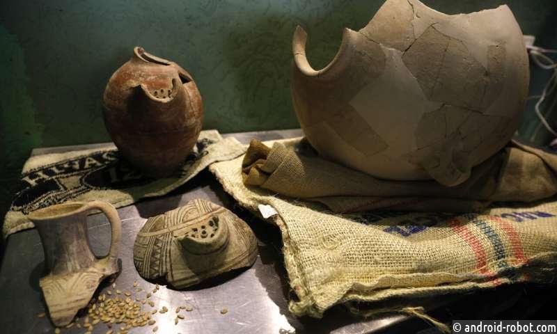 Израильские ученые варят пиво из возрожденных древних дрожжей