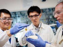 Ученые превращают пластик в полезные химические вещества, используя солнечный свет