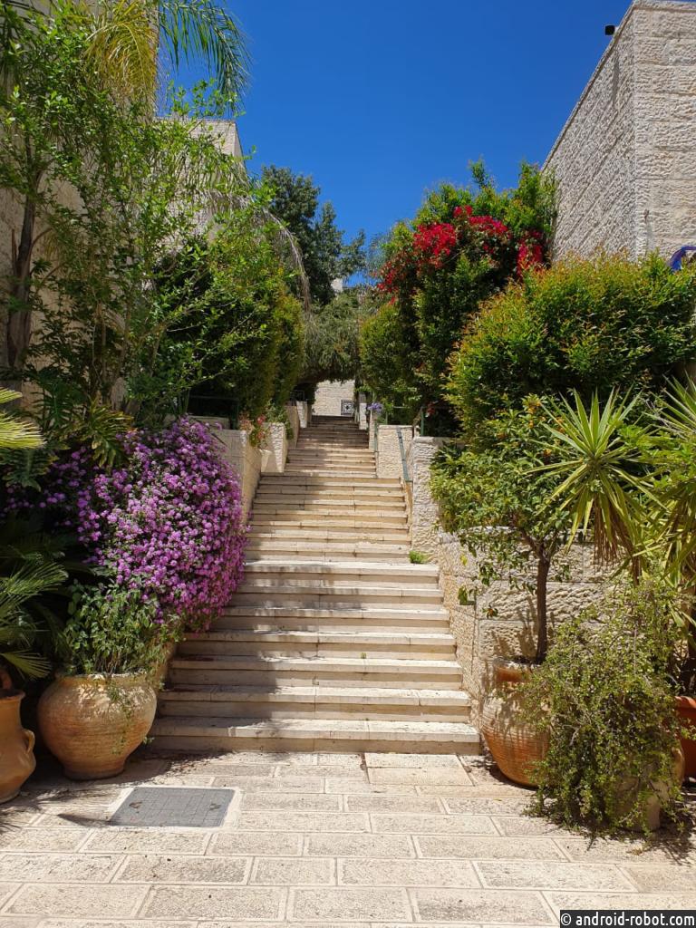 Впервые названа дата возвращения туристической индустрии Израиля к работе