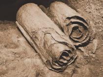 ИИ обнаружил второго автора «Свитка Мертвого моря»