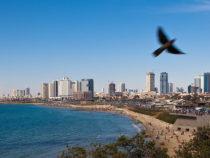 В Израиле вырос индекс чистоты пляжей до 77%