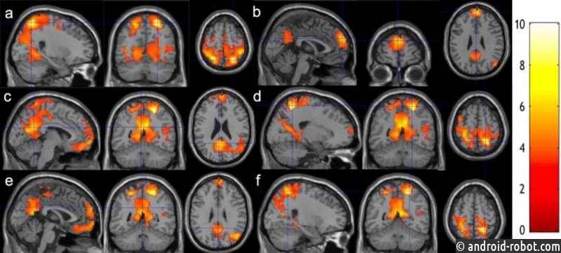 Исследования показывают, что всего 8 недель занятий медитацией могут ускорить ваш мозг