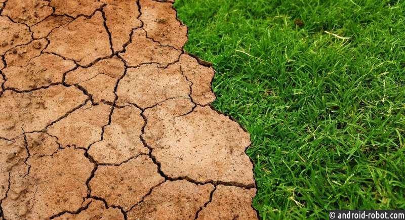 Новое исследование палеоклимата: глобальное потепление порождает еще большее потепление
