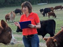 Фермеры США применяют ИИ для улучшения качества и количества мяса и молочных продуктов