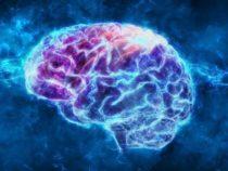Как работают плацебо, до конца не изучено, но альтернативная теория сознания содержит некоторые подсказки