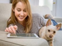 Запущен онлайн-сервис для умного поиска домашних животных